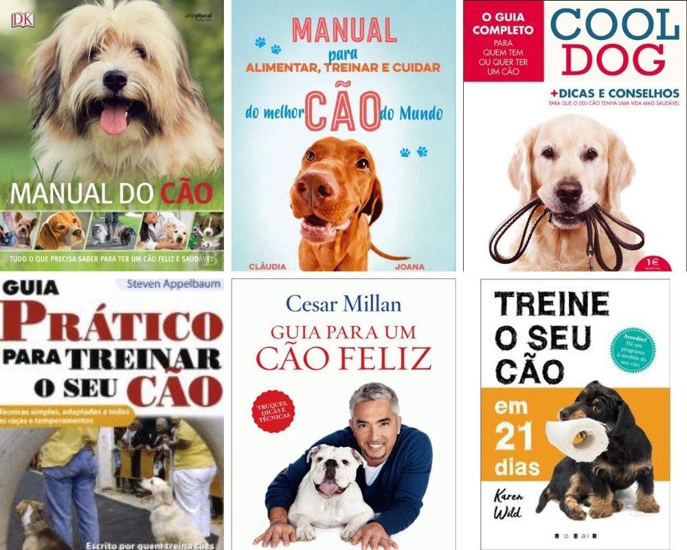 Read more about the article A selecção de livros do Supercão